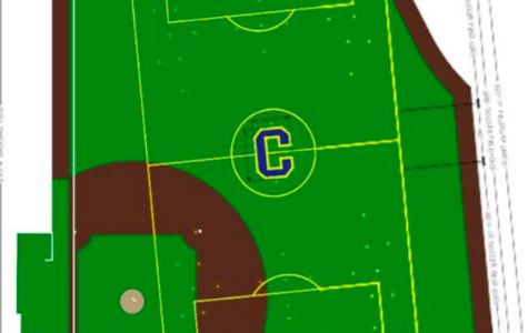 Is There Enough Turf Space in Cranford?