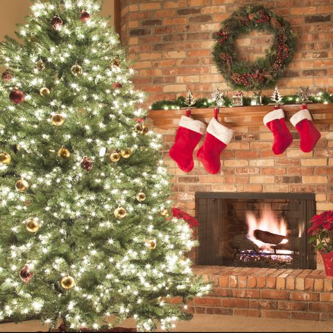 When is it too early to start your Christmas celebration?