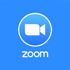 The Rise of Zoom